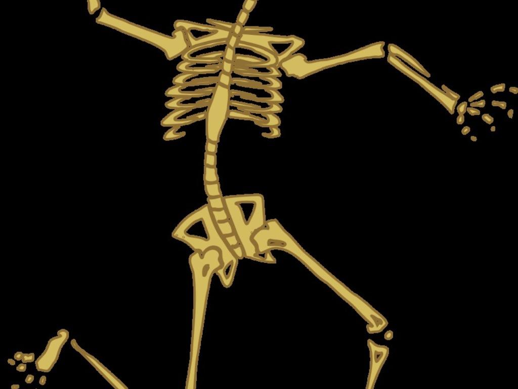 Entrená tu esqueleto - ElSol.com.ar - Diario de Mendoza, Argentina ...
