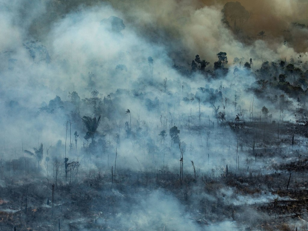 https://elsol-compress-release.s3-accelerate.amazonaws.com/images/large/1566667819507incendio%20amazonia%20(5).jpg