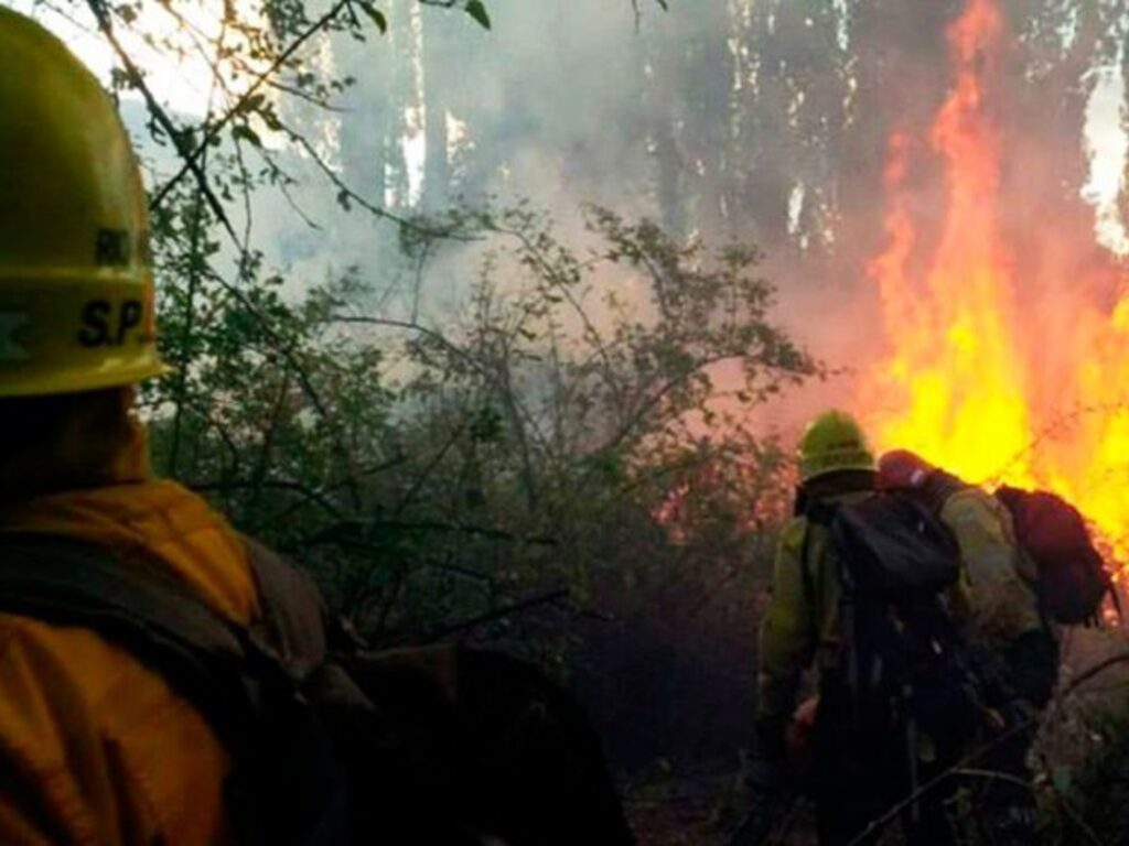 https://elsol-compress-release.s3-accelerate.amazonaws.com/images/large/1611667273703incendio%20forestales.jpg